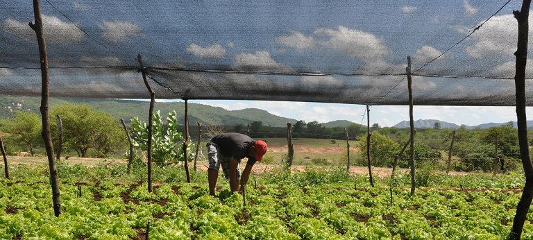 Government of the State of Paraíba World Bank Project to boost sustainable agriculture in Brazil